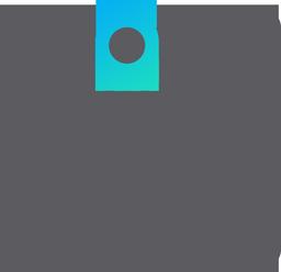 Development Service Provider